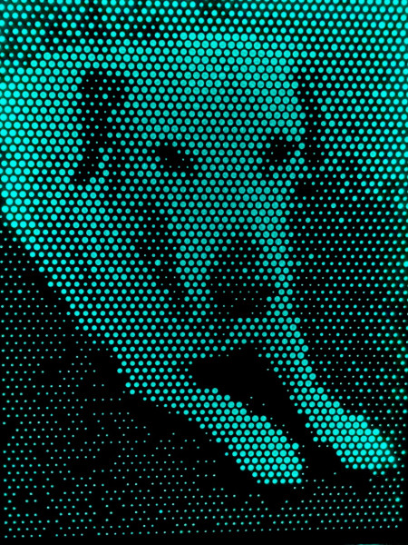 Lochbild Hund